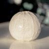 Immagine di zucchina bianca di ceramica.