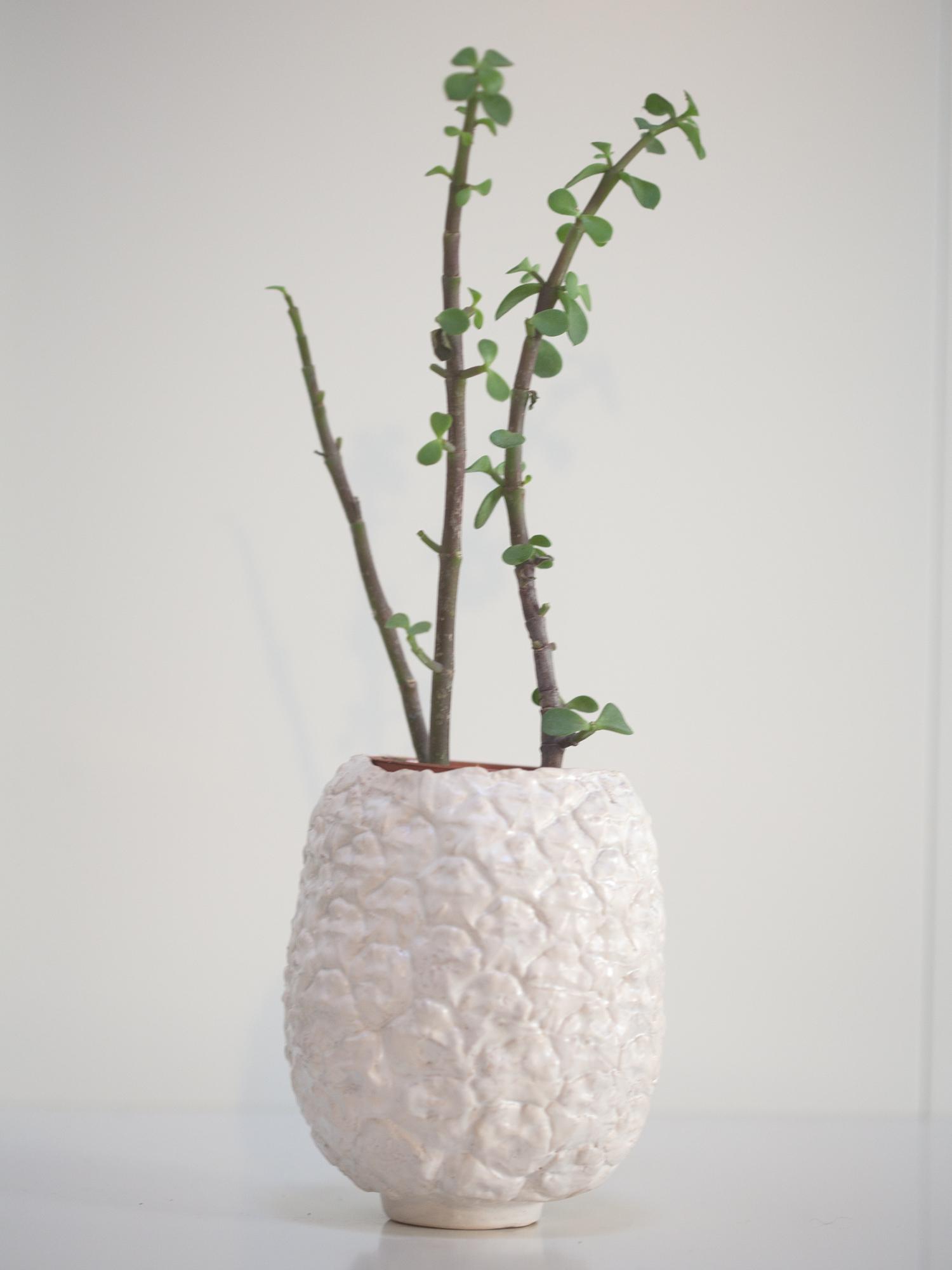 Immagine di vaso a forma di ananas di colore bianco realizzato in ceramica.