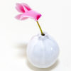 vaso zucchina di ceramica di colore bianco con fiore rosa.