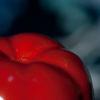 Immagine di pomodoro rosso di ceramica